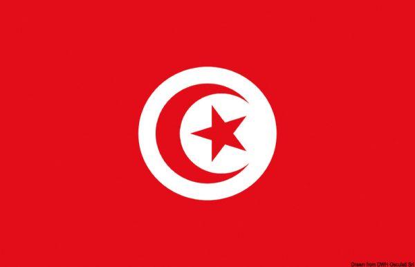 Bandiera_tunisia.jpg